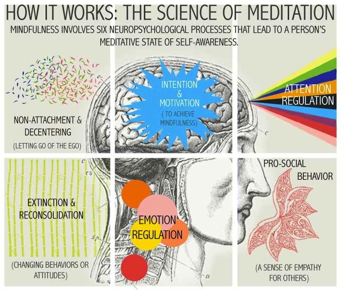 Estado De Meditación: La Autoconciencia