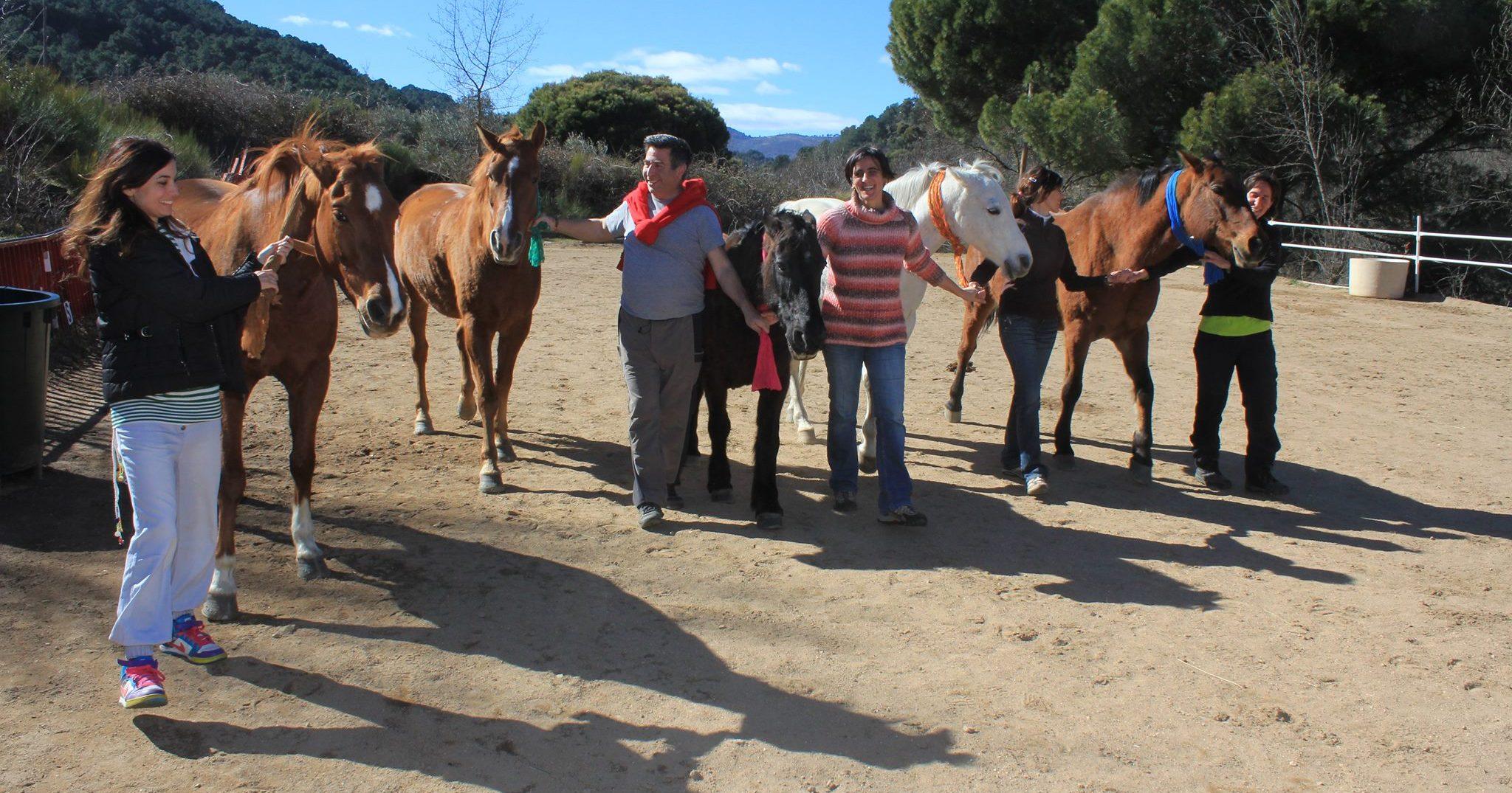Coaching Equino: Los Caballos Nos Ayudan A Ser Mejores Líderes