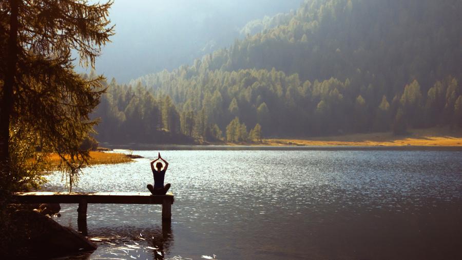 Mindfulness Y Adapatación Al Entorno
