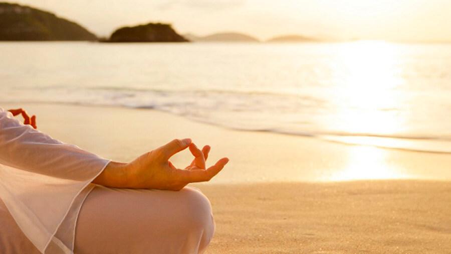 Re-programar Tu Mente Con Mindfulness