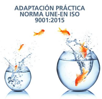 Nueva Norma UNE-EN ISO 9001:2015 Adaptación Práctica II