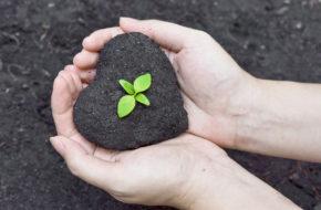 Qué Es La Responsabilidad Social Corporativa: Ejemplos (II)