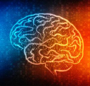 Neurociencia Neuroplasticidad